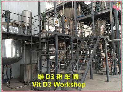 熱烈祝賀公司維D3粉車間正式投產